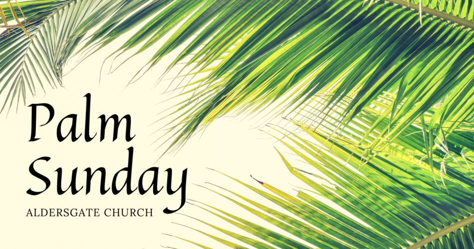 Palm Sunday: Who is This?