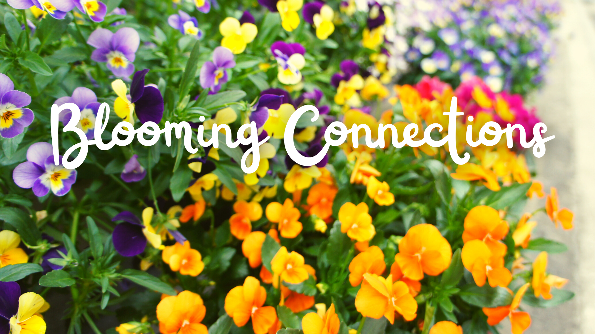 Blooming Connections at Aldersgate